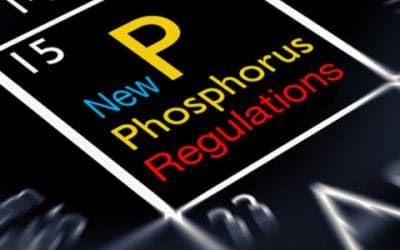What Are the New State Phosphorus Regulations I Need to Know?
