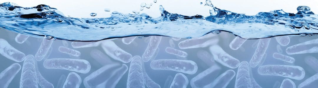 How Innova MB™ Products Promote Biological Oxidation in Wastewater